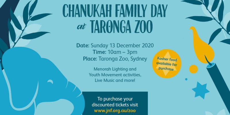 Chanukah at the Zoo